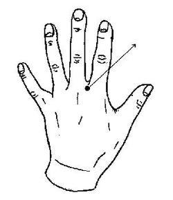 Hand1_4