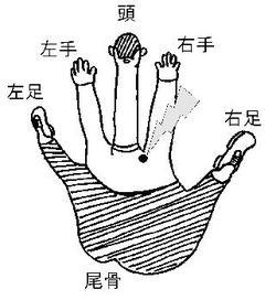 Hand2_2