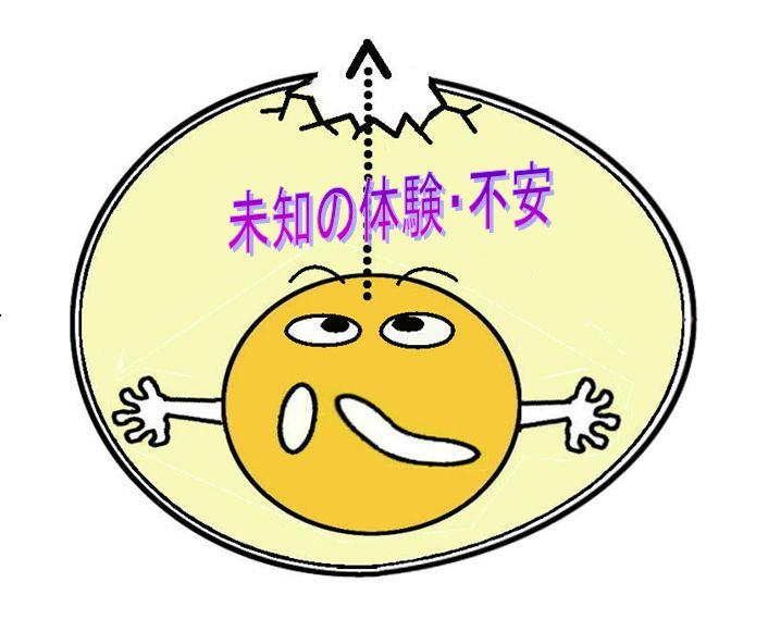 Michitama1